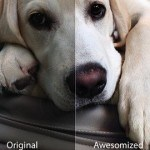 Camera Awesome App for iPhone Review
