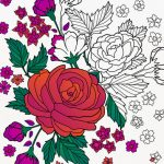 Colorfy Coloring Book for Adults iPhone App Review